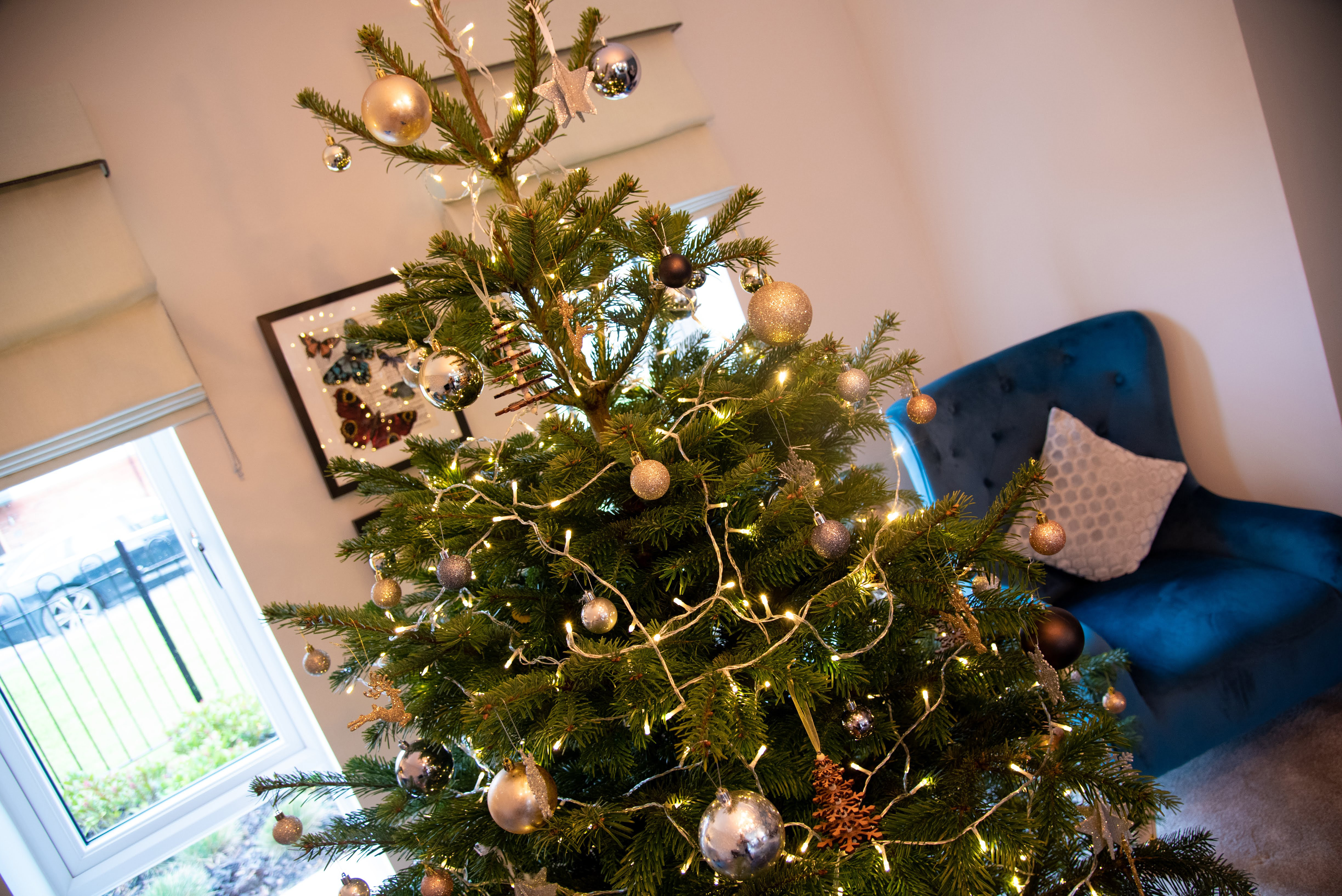Top Tree Tips For Finding And Decorating The Perfect Christmas Tree Woodhead Homes